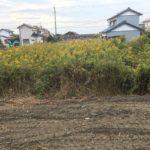 三重県鈴鹿市で空き地の草刈りです 三重県鈴鹿市の草刈り業者 草刈り専門店草刈り本舗桐生