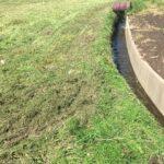 津市にて空き地の草刈りです 三重県鈴鹿市の草刈り専門店 草刈り本舗桐生
